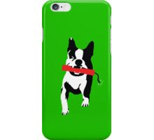 Bomb Dog iPhone Case/Skin
