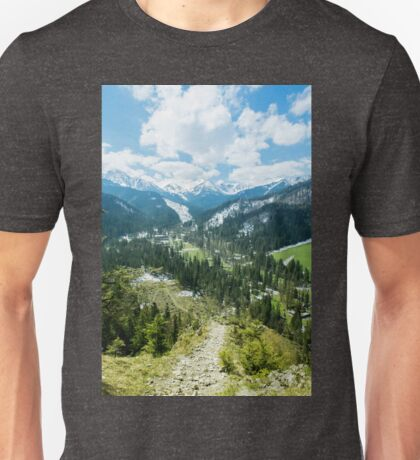 The Tatra Mountains in Poland. Mountains landscape with green forest and snowy peaks. Summer time Unisex T-Shirt
