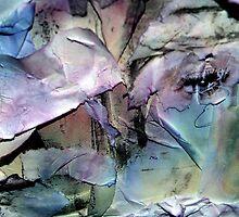 Judgments of sentiment. by Danica Radman