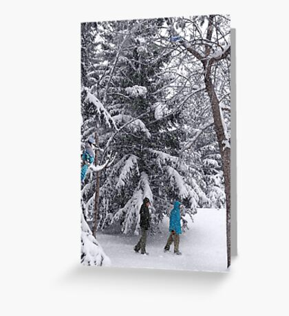 Walking in a Winter Wonderland - Blue Jays and Hikers Snowy Landscape Greeting Card