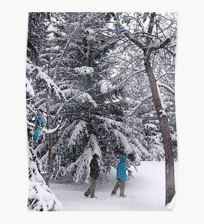 Walking in a Winter Wonderland - Blue Jays and Hikers Snowy Landscape Poster