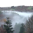 misty valley2 by jamluc