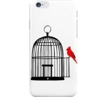 Vacant Birdcage iPhone Case/Skin