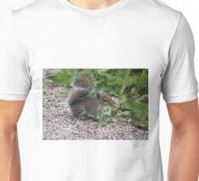 Baby Squirrel Unisex T-Shirt