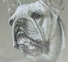 French Bulldog by BarbBarcikKeith