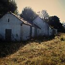 Abandoned Cottage, Clara by Grace Stewart