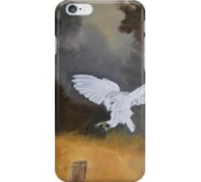 Landing Place iPhone Case/Skin