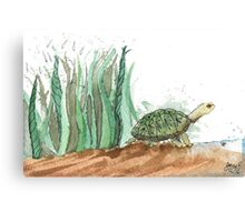 New Friend- Watercolor Turtle Illustration Canvas Print
