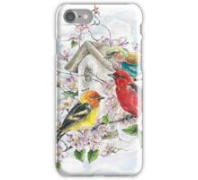 Painted Buntings and a Tanager Enjoying the Spring Flowers iPhone Case/Skin