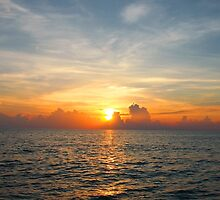 Caribbean Sunset by Amy McDaniel