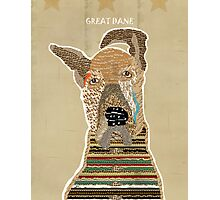 the great dane  Photographic Print