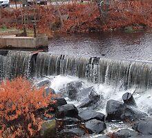 wakefield rhode island waterfall 2 by Maureen Zaharie