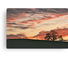Lone Tree and Smokey Foothill Sunset Canvas Print