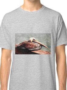 pelican at rest Classic T-Shirt