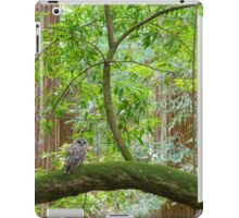 Northern Spotted Owl iPad Case/Skin