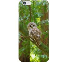Northern Spotted Owl iPhone Case/Skin