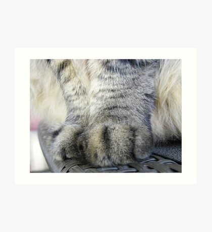 My cat has UGG boots for paws..... Art Print