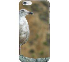 California Ocean Seagull iPhone Case/Skin