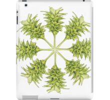 Turmeric flower- compilation 1 iPad Case/Skin