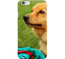 Playful Dog - Nature Photography iPhone Case/Skin