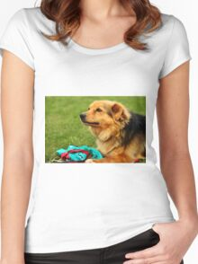 Playful Dog - Nature Photography Women's Fitted Scoop T-Shirt