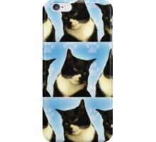 Cute Tuxedo Cat Pattern  iPhone Case/Skin