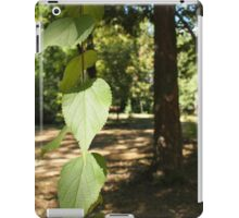 Selective focus on a young branch of a tree with leaves iPad Case/Skin