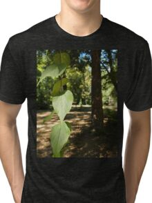 Selective focus on a young branch of a tree with leaves Tri-blend T-Shirt