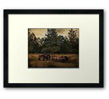 Life On The Farm (A Collaboration) Framed Print