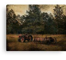 Life On The Farm (A Collaboration) Canvas Print