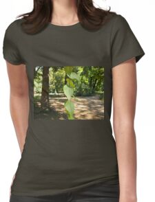 Selective focus on a young branch of a tree with leaves Womens Fitted T-Shirt