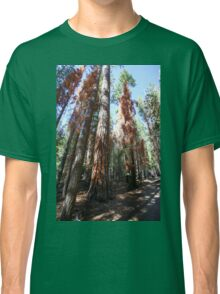 Falls trail at Yosemite national Park,  Classic T-Shirt