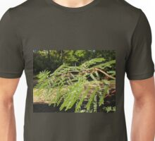 Selective focus on the young acacia branch with leaves and large spikes Unisex T-Shirt
