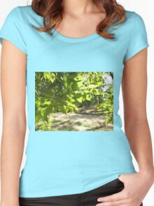 Selective focus on a young branch of a tree with leaves on blurred background Women's Fitted Scoop T-Shirt