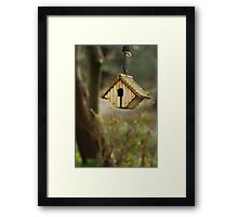A birds' nest hangs from a tree Framed Print