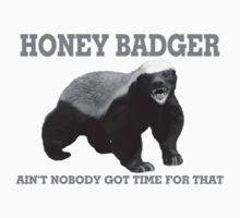 Honey Badger Ain't Nobody Got Time For That by FireFoxxy