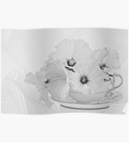 Lavatera Flowers In Tea Cup - Still Life Poster