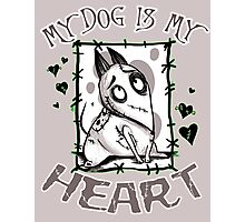 My Dog is my Heart Photographic Print
