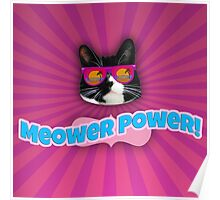 Meower Power Poster