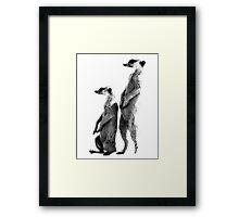 Clever Meerkat. Digital Wildlife Engraving Image Framed Print