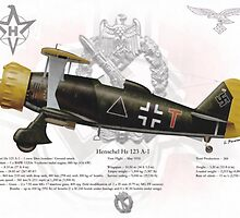 Henschel Hs 123 by A. Hermann