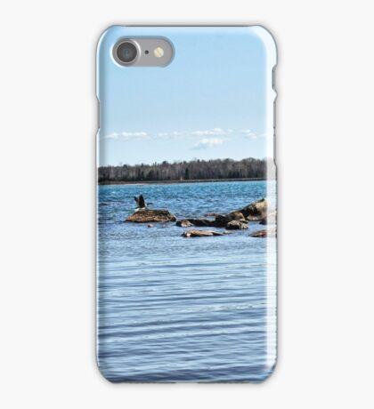 Flying Bye iPhone Case/Skin