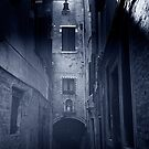 Dead end in Venice by Maggie Hegarty