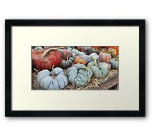The Misfit Pumpkins.... Framed Print