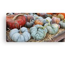 The Misfit Pumpkins.... Canvas Print