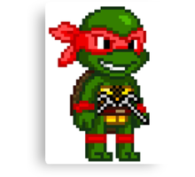 Raphael is Cool but Rude Canvas Print