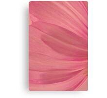 Pink Cosmo Petals Macro  Canvas Print