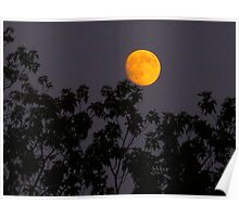 That Super Moon Poster