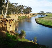 Werribee River and the Tree - Vic. Australia by EdsMum