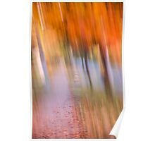 Fall Canopy Poster